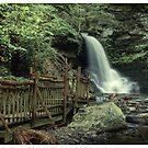 Bridal Veil Falls (version II) by Aaron Campbell