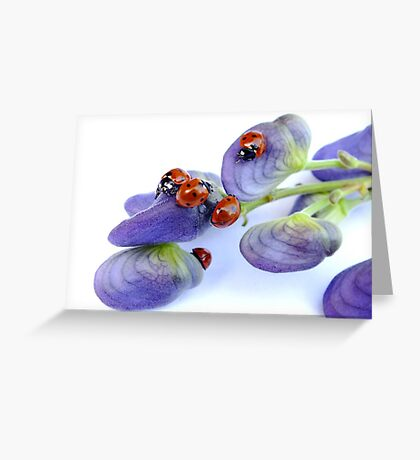 Ladies Day Out... Greeting Card