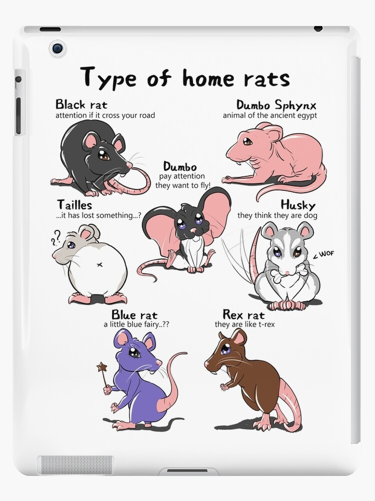 Type Of Home Rats Ipad Case Skin By Ellrarte Redbubble