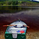Boat at Whonnock Lake by MaluC