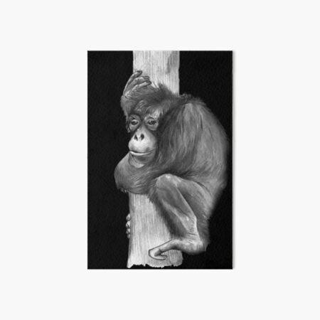 Orangutan in Black and White Art Board Print