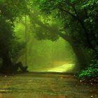 Monsoon Moods by Prasad