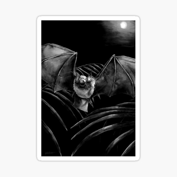 Parnell's Mustached Bat Black and White Sticker