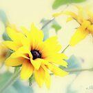Autumn yellow by aMOONy