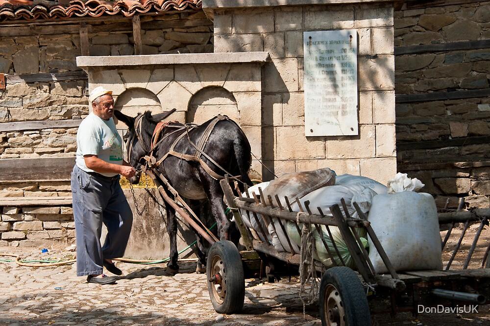 Rural Life - Bulgaria by DonDavisUK