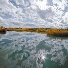 Southern Alberta 2013 by Kerri Gallagher