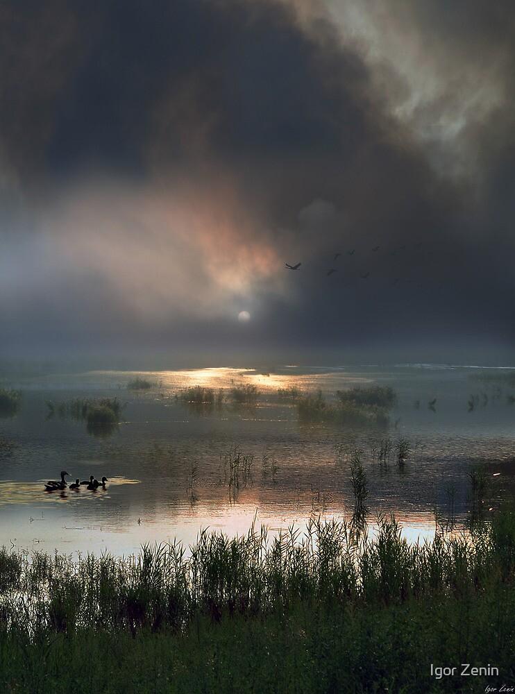 End Of Summer by Igor Zenin