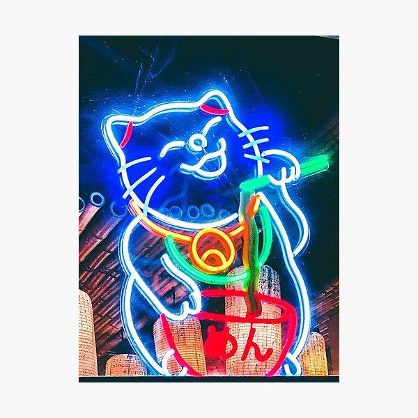 Japanese Cat Photographic Print