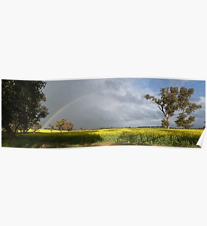 Rainbow Over Canola Poster
