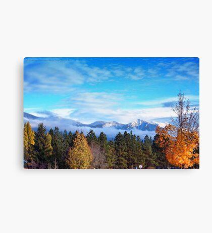 Birth of Winter Canvas Print