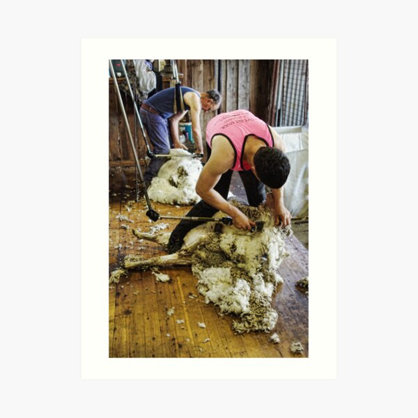 CONTRAST OF SHEARING WORLDS Art Print