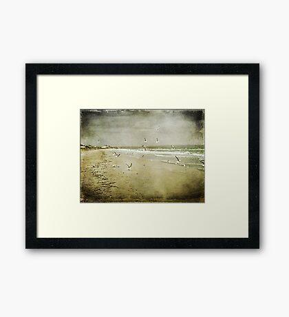 Born Free ~ Framed Print