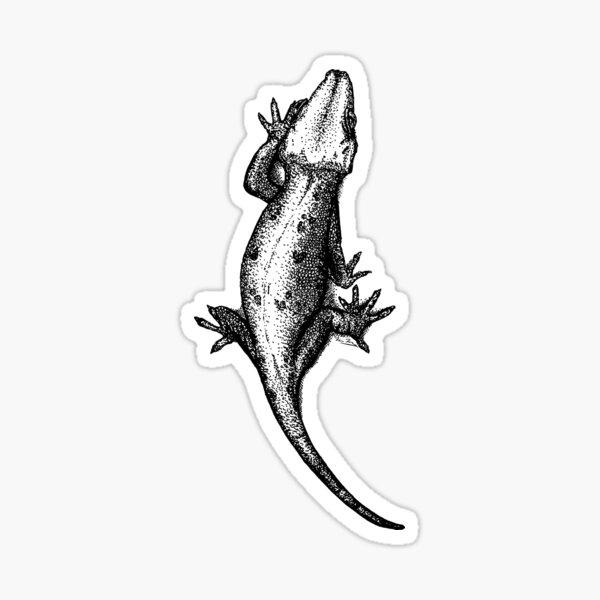 Gargoyle gecko Sticker