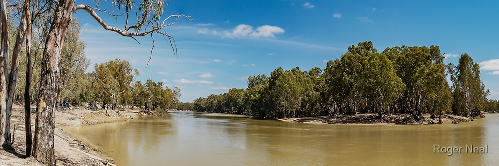 Murray River at Boundary Bend by Roger Neal