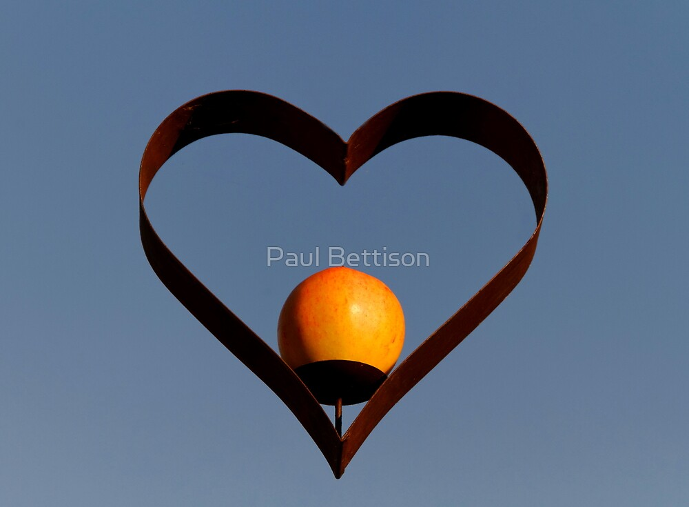 The Heart of an Apple by Paul Bettison
