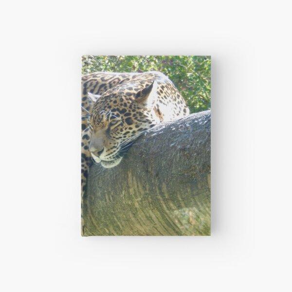 Lounging Jaguar Hardcover Journal