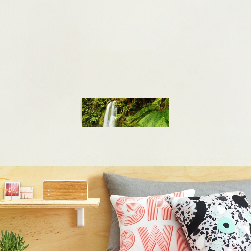 Beachamp Falls, Otways, Victoria, Australia  Photographic Print