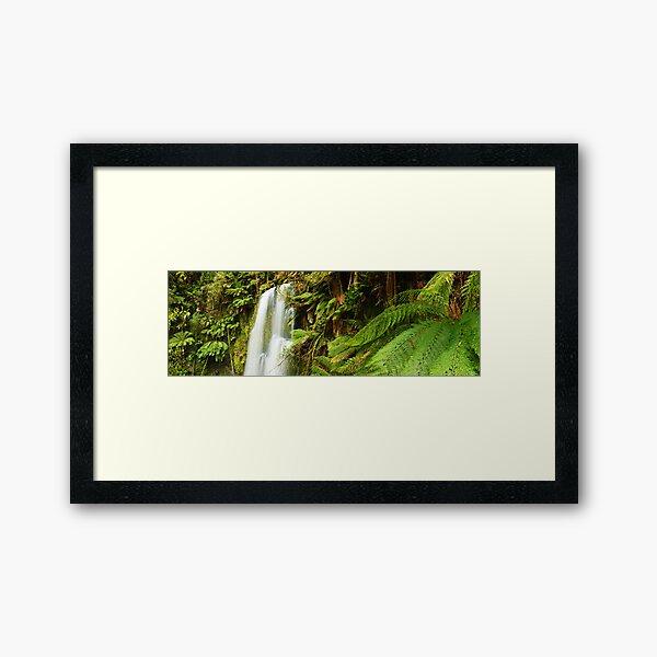 Beachamp Falls, Otways, Victoria, Australia  Framed Art Print