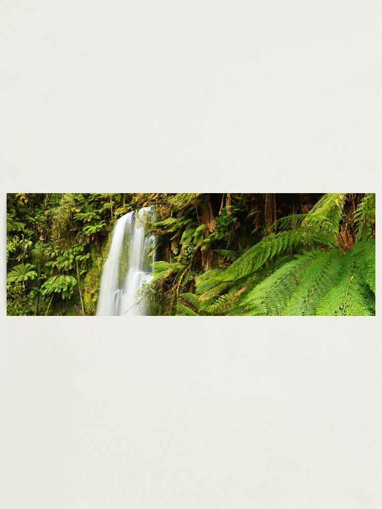 Alternate view of Beachamp Falls, Otways, Victoria, Australia  Photographic Print