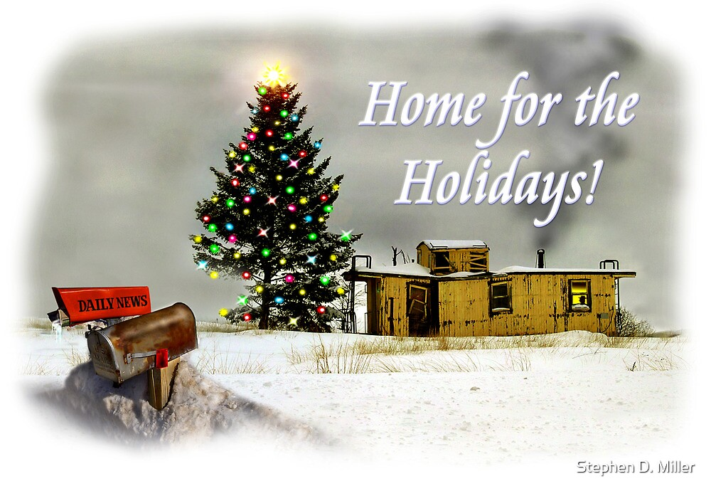 Home for the Holidays by Stephen D. Miller