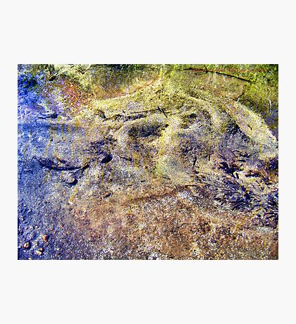 All That Glitters Is Not Gold Photographic Print