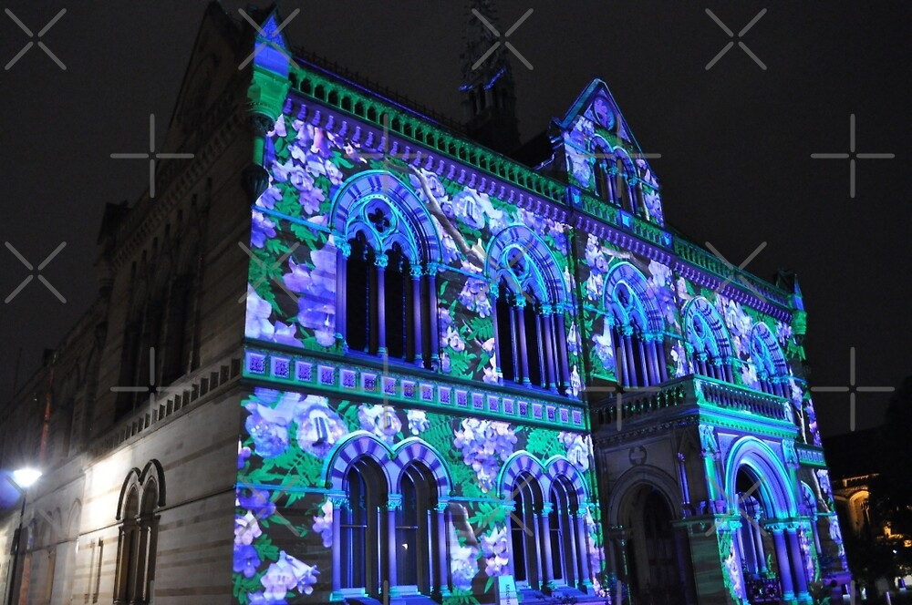Northern Lights - Lavender Front by bsn-photography