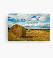 Hay Fields of Heyshott Canvas Print
