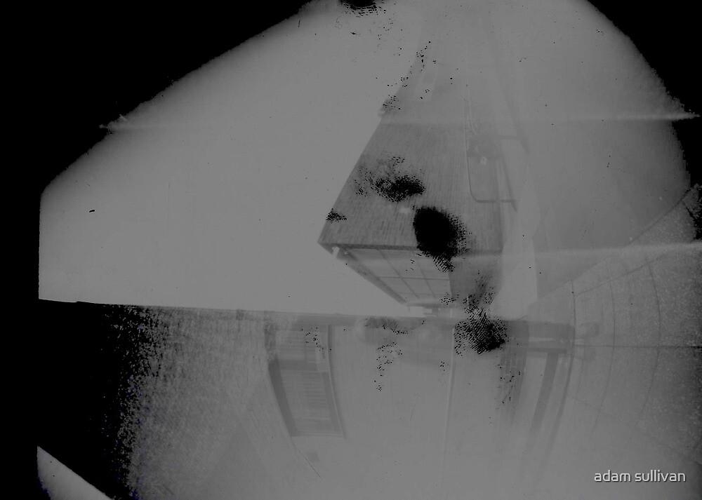 pinhole by adam sullivan
