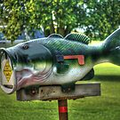 Bigmouth bass for big a@@ packages by vigor