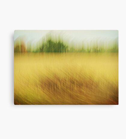 Canadian Fields Canvas Print