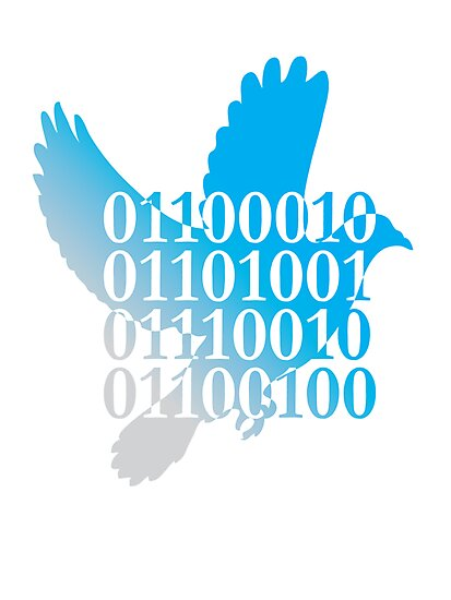 bird binary code dove peace design by Veera Pfaffli