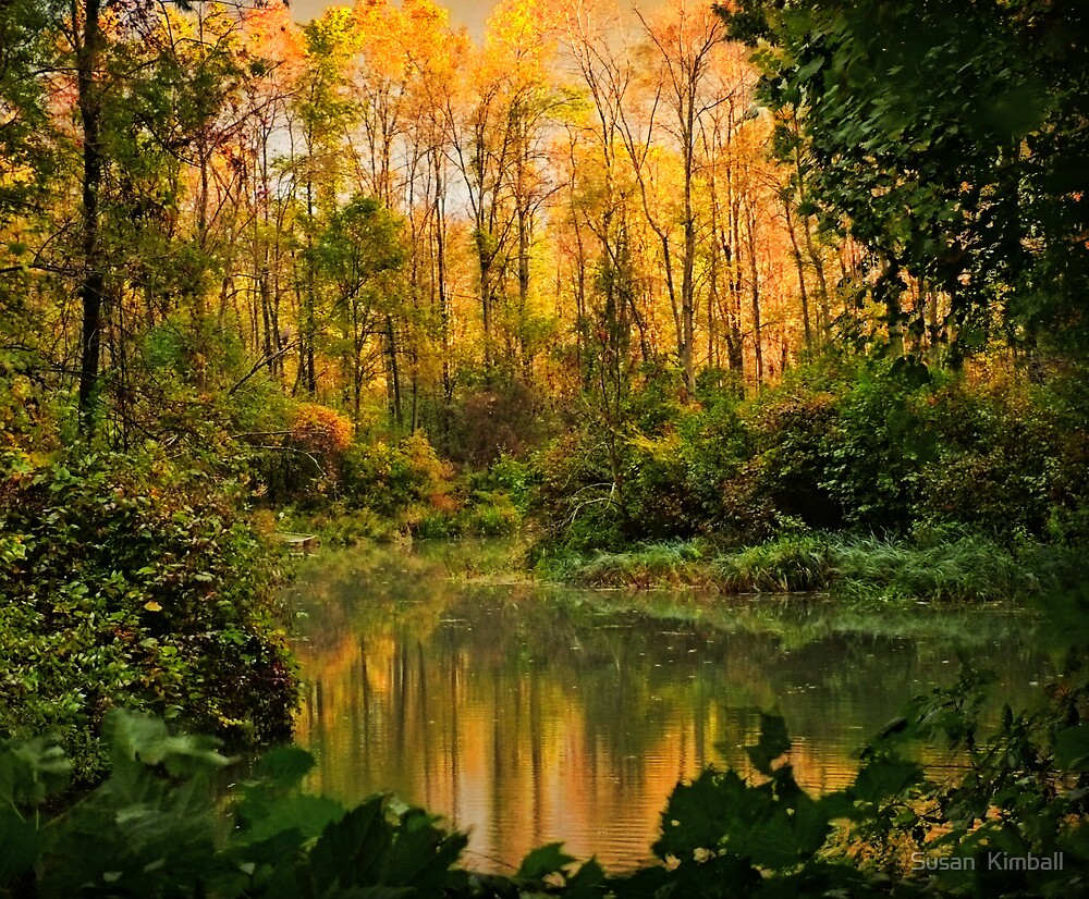 Autumn Reflections by Susan  Kimball