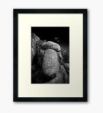 Squint Nose Rock Framed Print