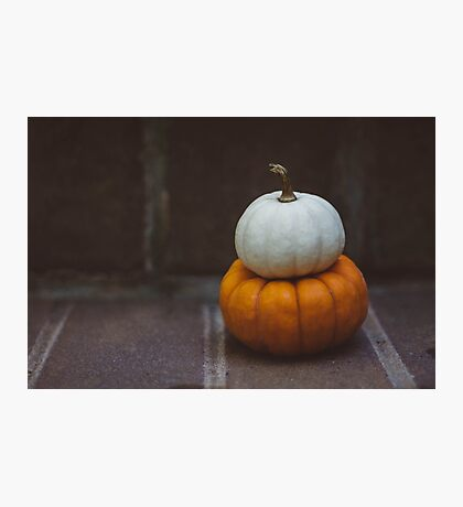 Two Pumpkins no. 1 Photographic Print