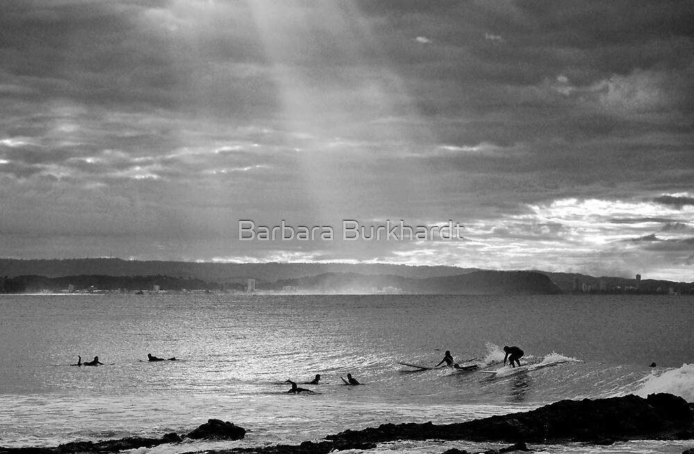 Never a Dull Day - Snapper Rocks by Barbara Burkhardt