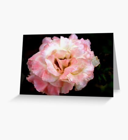 Lightly rouged Greeting Card