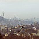 Istanbul Skyline by Quixotegraphics
