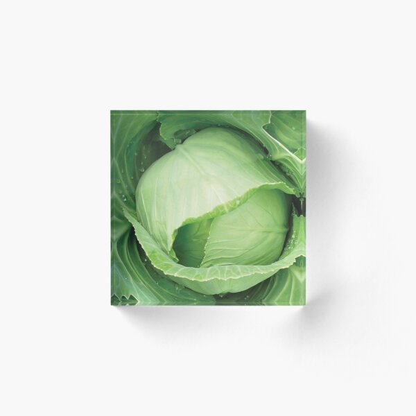 Green cabbage Acrylic Block