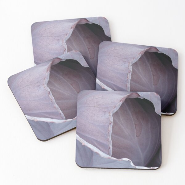 Red cabbage Coasters (Set of 4)