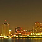 Skyline of New Orleans from Algiers Point by michael6076