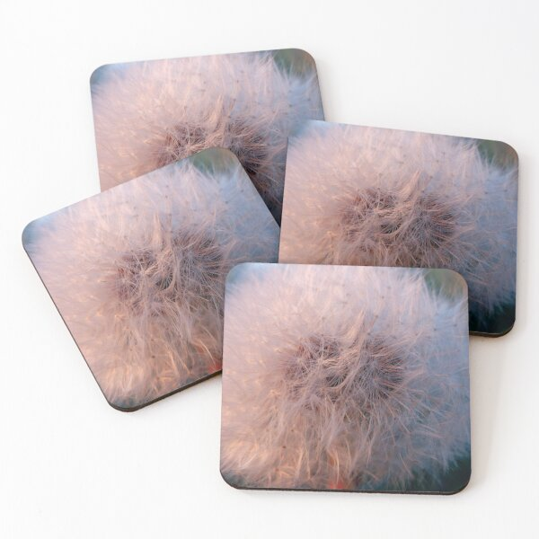 Dandelion Clock Coasters (Set of 4)