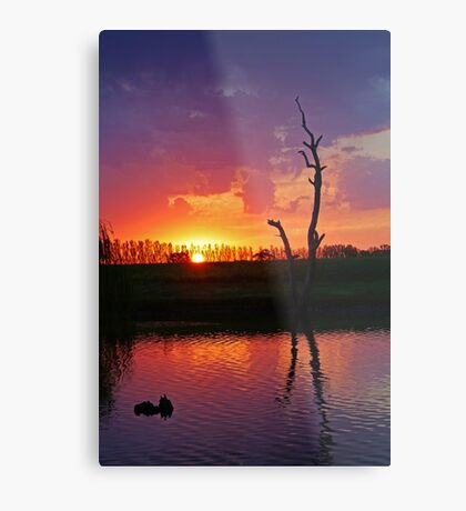Elmore Sunset Metal Print