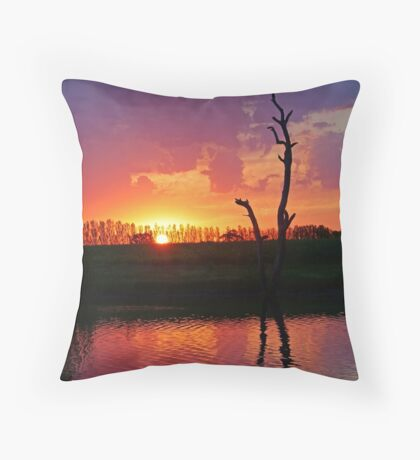 Elmore Sunset Throw Pillow