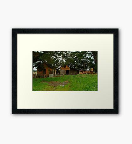 Farm Near Ballan,Victoria Framed Print