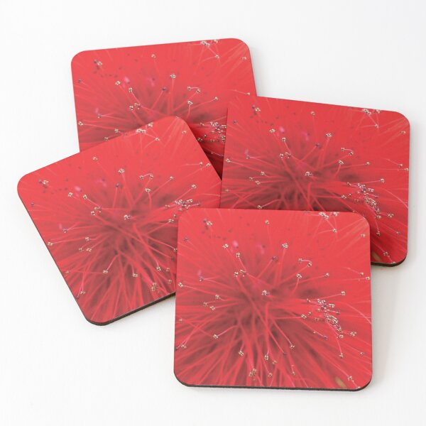 Exotic red flower heart Coasters (Set of 4)