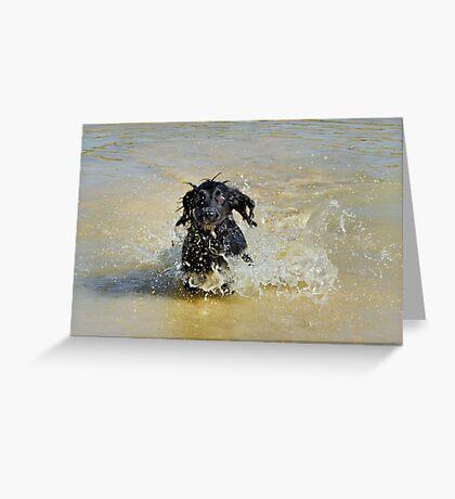 The muddy pond Greeting Card