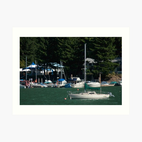 Boats at Harrison Hot Springs Art Print