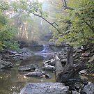 McCormic Creek Canyon Falls by Dave & Trena Puckett