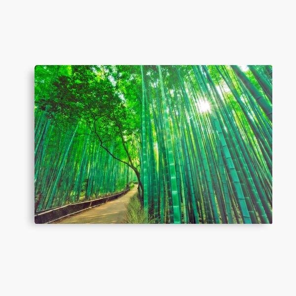 Bamboo forest at Sagano - Arashiyama (Kyoto) Metal Print