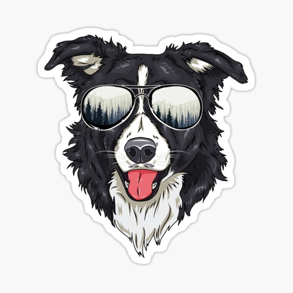 Funny Border Collie Outdoor Sunglasses Dog Lover Gift Sticker